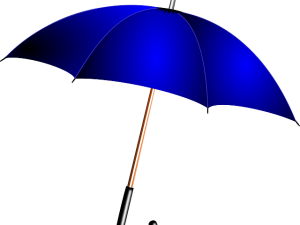Paraguas .net